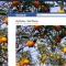 Abilitare il vecchio visualizzatore di foto su Facebook con FB PhotoTheater Killer