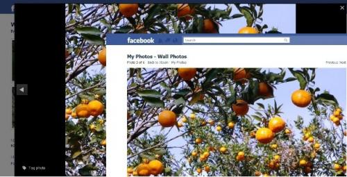 FB PhotoTheater Killer