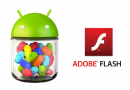 Installare Adobe Flash Player su device Android 4.1/4.2 Jelly Bean