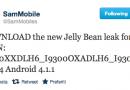 Galaxy S III: disponibile il nuovo firmware leaked I9300XXDLH6
